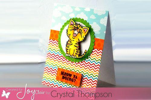 Just-kitten-around.-crystalthompson