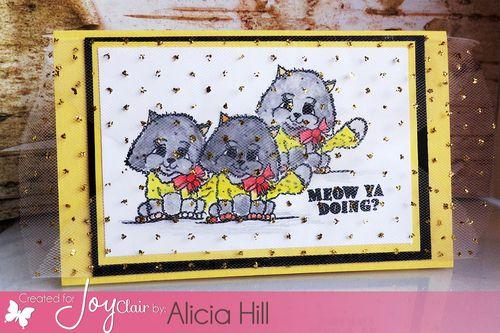 Joy-Clair-Just-kitten-around-Alicia-Hill