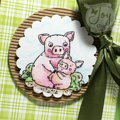 JC May Piggie Close-up