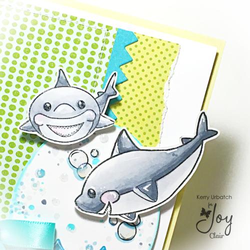 JC Baby Shark